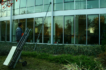 Window and facade cleaning